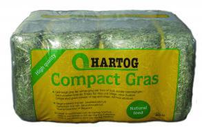 Compact Gras fc